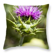 Artichoke Thistle 3 Throw Pillow