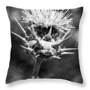 Artichoke Thistle Bw Throw Pillow