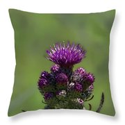 Artistic Buds And Bloom Throw Pillow