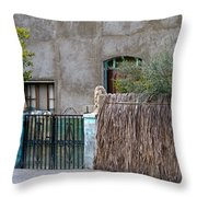 Artistic Entry Throw Pillow