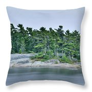 Artistic Granite And Trees  Throw Pillow