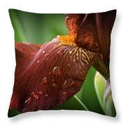 Artistic Iris Throw Pillow