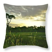 Artistic Lush Marsh Throw Pillow