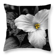Artistic Trillium Throw Pillow