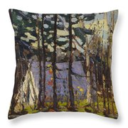 Artist's Camp, Canoe Lake, Algonquin Park Throw Pillow