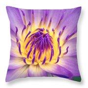 Ao Lani Heavenly Light Throw Pillow