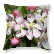 Apple Blossom Time Throw Pillow
