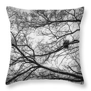 Snow On Bare Branches Throw Pillow