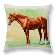 Roasting Chestnut - Morgan Horse Throw Pillow