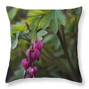 Heart Focused Throw Pillow