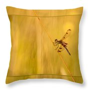 Dragonfly Pole Dance Throw Pillow