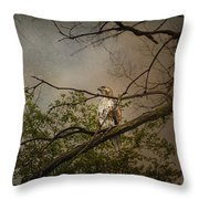 Higher Perspective Throw Pillow