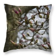 Today The World Is New Again Throw Pillow