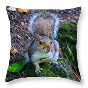 Glasgow Squirrel Throw Pillow