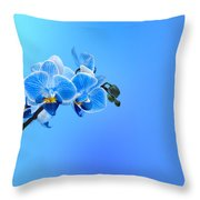 Orchid Blue Throw Pillow