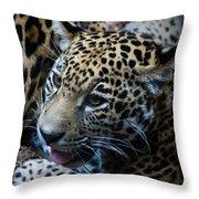 Jaguar Cub Throw Pillow