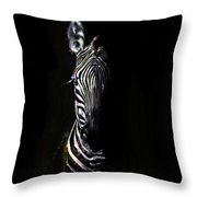 Zebra Fade Into Light Throw Pillow