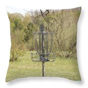 Brown Park Disc Golf Course Throw Pillow