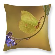 Yellow Butterfly On Blue Forget-me-not Flowers Throw Pillow