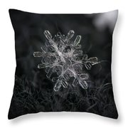 Snowflake Photo - January 18 2013 Grey Colors Throw Pillow