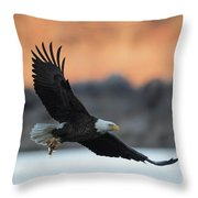 Evening Catch Throw Pillow
