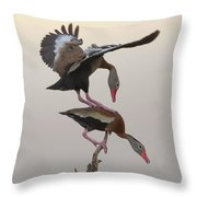 Whistling Duck Ballet  Throw Pillow