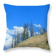 At The End Of The World Throw Pillow by Ivana Westin
