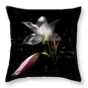 Lovely Lilies Partners Throw Pillow