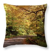 Mountain Road Stowe Vt Throw Pillow