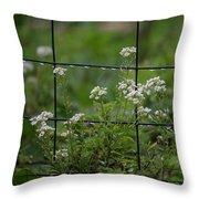 Raindrops On The Garden Fence Throw Pillow