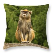 Meditating Monkey Throw Pillow