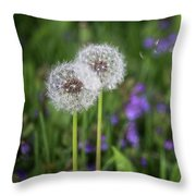 Three Wishes Throw Pillow