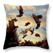 Birds And Fun At Butler Park Austin - Birds 1 Throw Pillow
