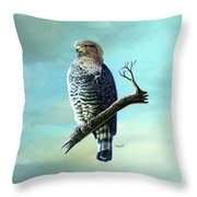 Southern Banded Snake Eagle Throw Pillow