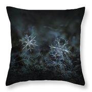 Snowflake Photo - When Winters Meets - 2 Throw Pillow by Alexey Kljatov