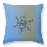 Snowflake Macro Photo - 13 February 2017 - 2 Throw Pillow