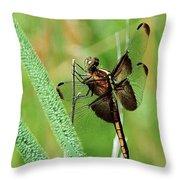 Summer Dragonfly Throw Pillow