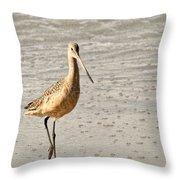 Sandpiper Strolling - Horizontal Throw Pillow