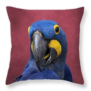Cheeky Macaw Throw Pillow