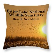 Bitter Lake National Wildlife Refuge Birds, Roswell, New Mexico Throw Pillow