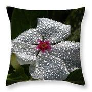 Natures Glitter Throw Pillow