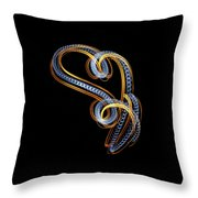 Tic 20180226-7753v Throw Pillow