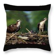Osprey Family Night Throw Pillow