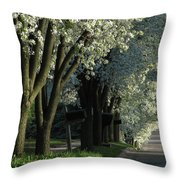 Shady Grove Throw Pillow