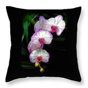 Cascading Orchid Beauties Throw Pillow