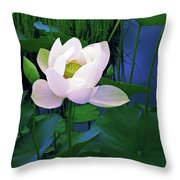 Midnight Lotus Throw Pillow