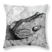 Frog On Rock Throw Pillow