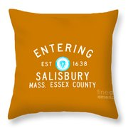 Entering Salisbury Throw Pillow