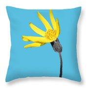 Yellow Wildflower Throw Pillow
