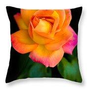 Arundel Rose Throw Pillow